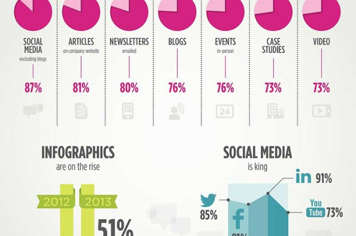 B2B Content Marketing in 2013 [Infographic]